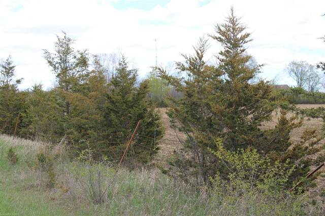0 Belleville Road, Cloyne, ON K0K 1X0 (MLS #K21002754) :: Forest Hill Real Estate Collingwood