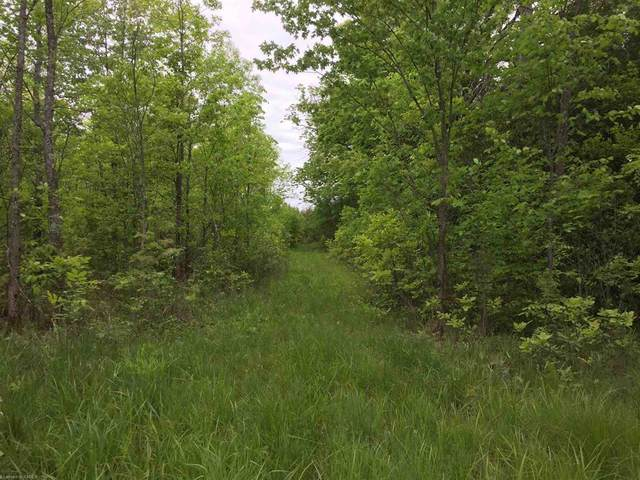 Roblin Road, Greater Napanee, ON K0K 2W0 (MLS #K21003618) :: Forest Hill Real Estate Collingwood