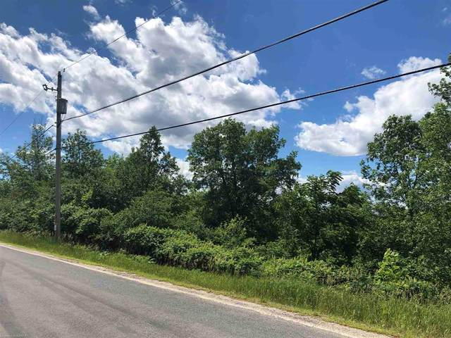 451190170 Maple Road, Odessa, ON K0H 2H0 (MLS #K21004183) :: Forest Hill Real Estate Collingwood