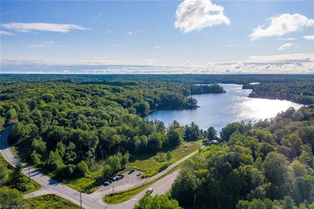 1010 Brackenrig Road, Port Carling, ON P0B 1J0 (MLS #30821571) :: Forest Hill Real Estate Collingwood