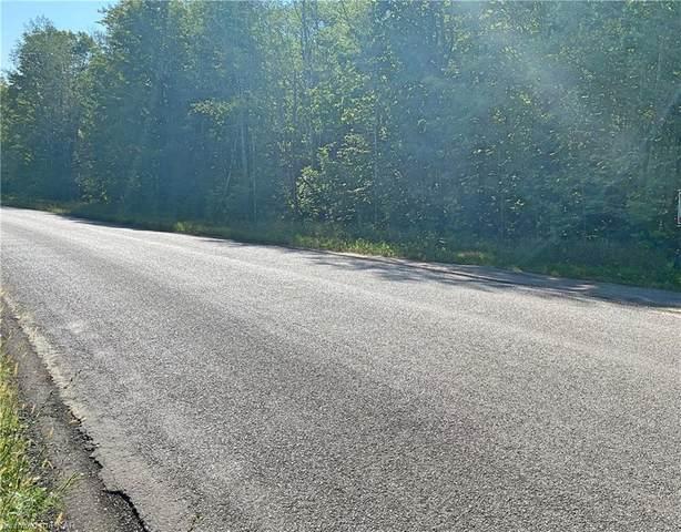 0 Elim Lodge Road, Trent Lakes, ON K0L 1J0 (MLS #40115052) :: Envelope Real Estate Brokerage Inc.