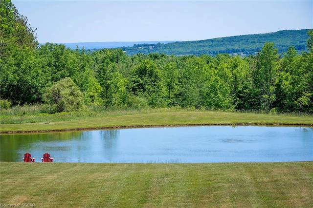 9503 6/7  NOTTAWASAGA Sideroad, Clearview, ON L0M 1L0 (MLS #40131745) :: Forest Hill Real Estate Collingwood
