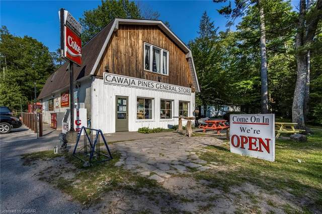 201 Tiny Beaches Road N, Tiny, ON L0L 2J0 (MLS #40146964) :: Forest Hill Real Estate Collingwood