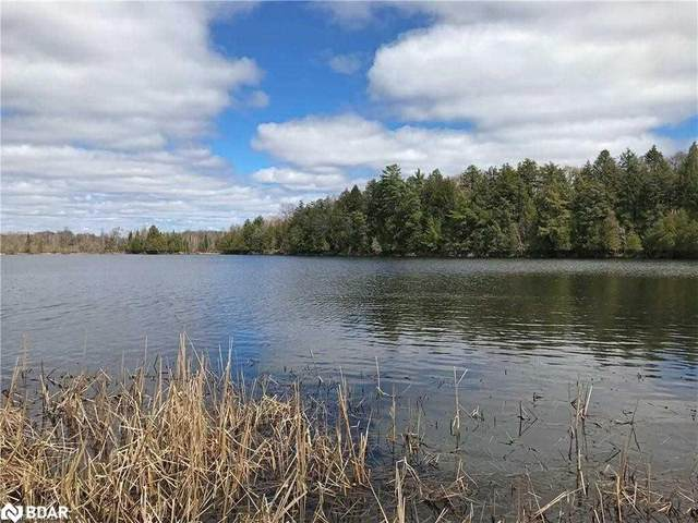 81 Fire Route 152, McKellar, ON P0G 1G0 (MLS #40148159) :: Forest Hill Real Estate Collingwood