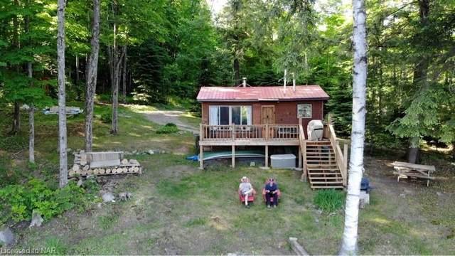1211 Pluto Trail, Haliburton, ON K0M 1S5 (MLS #40127290) :: Forest Hill Real Estate Collingwood