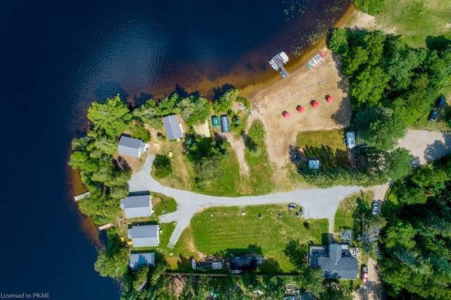 194 South Road, Hastings, ON K0L 2K0 (MLS #40134681) :: Forest Hill Real Estate Collingwood