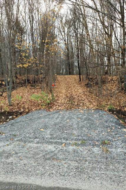 LT 11-17 6 Concession, Magnetawan, ON P0A 7O5 (MLS #230242) :: Forest Hill Real Estate Collingwood