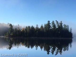 22 Herridge Lake Island C, Temagami, ON P0H 2H0 (MLS #30785659) :: Forest Hill Real Estate Collingwood