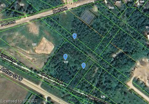131 King Street W, Thornbury, ON N0H 2P0 (MLS #40009992) :: Forest Hill Real Estate Collingwood