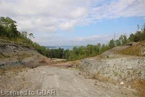 N/A Grey Rd 1, Georgian Bluffs, ON N0H 2T0 (MLS #40060009) :: Forest Hill Real Estate Collingwood