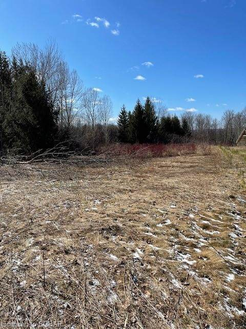 LT 18 A Concession, Meaford Municipality, ON N0H 1B0 (MLS #40100345) :: Forest Hill Real Estate Collingwood