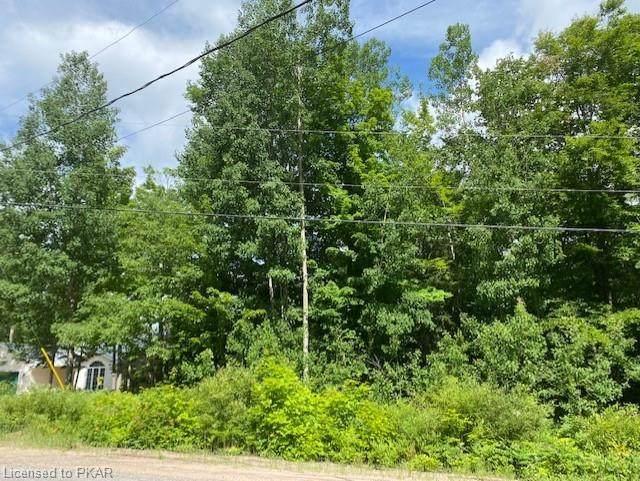 N/A Baptiste Lake Road, Hastings, ON K0L 1C0 (MLS #40137114) :: Forest Hill Real Estate Collingwood