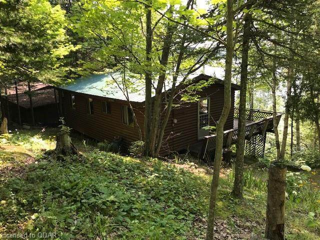 1009 Hickey Trail, Bancroft, ON K0L 1C0 (MLS #40145773) :: Forest Hill Real Estate Collingwood