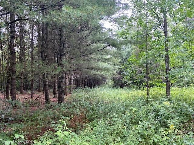 LOT 28 Coons Road, Elgin, ON K0G 1E0 (MLS #40166380) :: Forest Hill Real Estate Collingwood