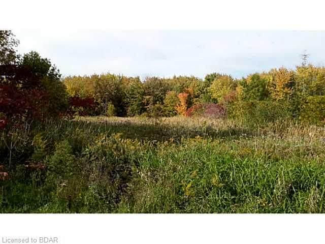 232 Bayshore Drive, Brechin, ON L0K 1B0 (MLS #BD1608495) :: Forest Hill Real Estate Inc Brokerage Barrie Innisfil Orillia