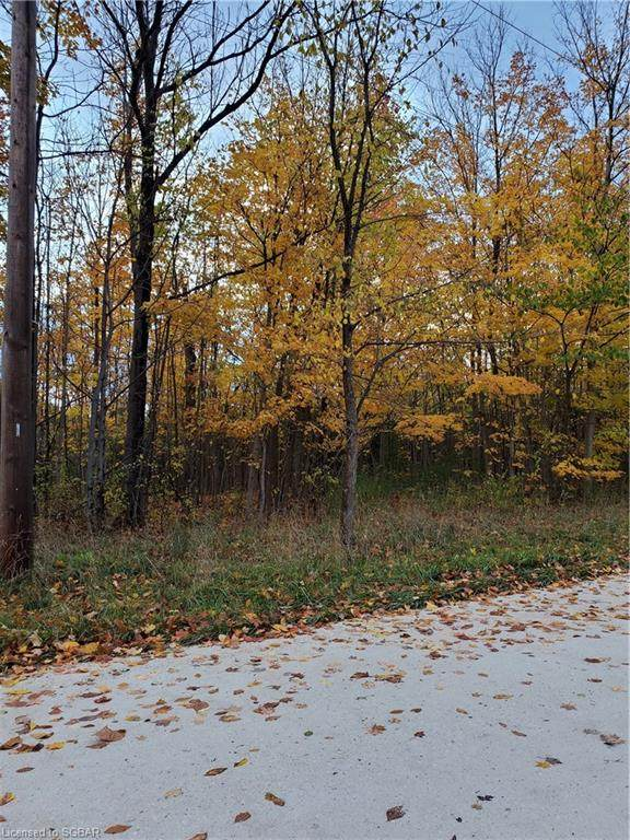 LT 36 11TH Line, Thornbury, ON N0H 2P0 (MLS #40037682) :: Forest Hill Real Estate Collingwood