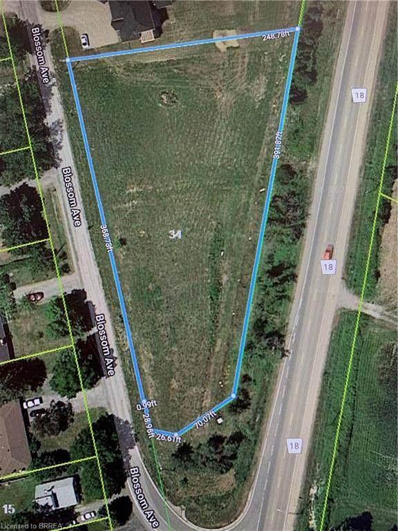 34 Blossom Avenue, Brantford, ON N3T 5L9 (MLS #40137300) :: Forest Hill Real Estate Collingwood