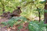20301 Cedar Oak Ridge - Photo 30