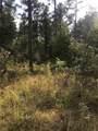 33 Eagle Mountain Trail - Photo 12