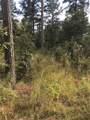 33 Eagle Mountain Trail - Photo 13
