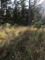 33 Eagle Mountain Trail - Photo 9