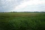 54.24 Acres 150th - Photo 1