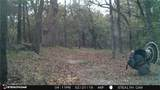 15075 76 County Rd Road - Photo 20