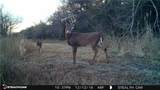 15075 76 County Rd Road - Photo 21
