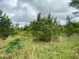 Hidden Pines Loop - Photo 12