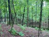Pine Seed Trail - Photo 8
