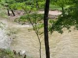 Hidden Pine Loop - Photo 7