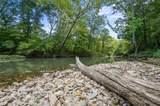 Hidden Pines Loop - Photo 15