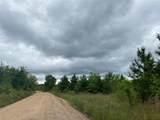 Hidden Pines Loop - Photo 3