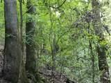 Trout Creek Road - Photo 13