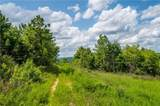 Lot 45 Baby Maple Trail - Photo 4