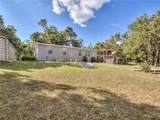 13174 Forest Fox Road - Photo 34