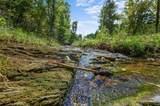 Pine Seed Trail - Photo 4