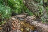 Hidden Pine Loop - Photo 1