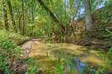 Hidden Pine Loop - Photo 4