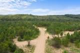 Hidden Pines Loop - Photo 2