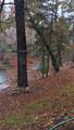 36549 Cline Road - Photo 1