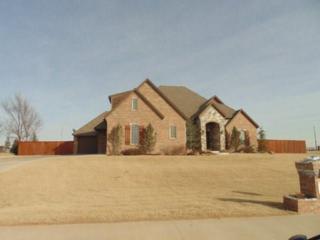 3460 Stanton Drive, Newcastle, OK 73065 (MLS #760163) :: Richard Jennings Real Estate, LLC