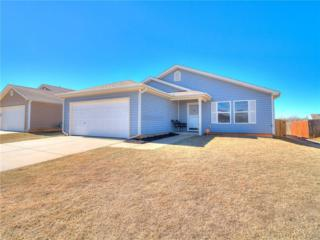 15609 Ivy Hill Drive, Oklahoma City, OK 73170 (MLS #762845) :: Richard Jennings Real Estate, LLC