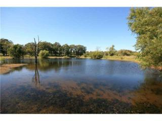 230th, Blanchard, OK 73010 (MLS #354693) :: Richard Jennings Real Estate, LLC