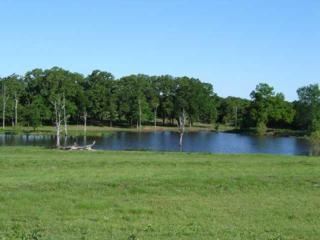 227th, Blanchard, OK 73010 (MLS #354700) :: Richard Jennings Real Estate, LLC