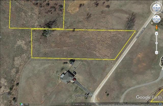 Crosstimbers Estates, Blanchard, OK 73010 (MLS #768477) :: Richard Jennings Real Estate, LLC