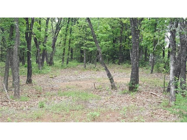 11340 Winding Lake Drive, Arcadia, OK 73007 (MLS #796363) :: Homestead & Co