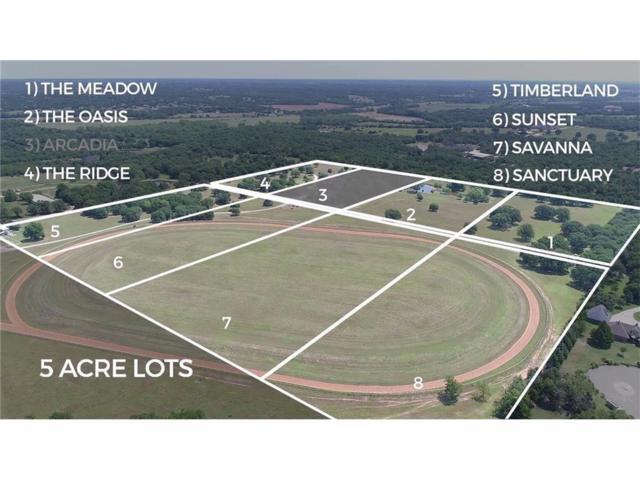 Arcadian Oaks Drive, Edmond, OK 73034 (MLS #799689) :: Wyatt Poindexter Group