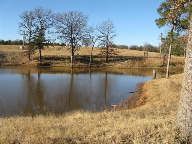 22095 E County Road 75, Perkins, OK 74059 (MLS #801867) :: Wyatt Poindexter Group