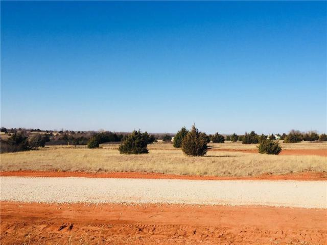 Barrington Place Drive, Blanchard, OK 73010 (MLS #805383) :: Meraki Real Estate
